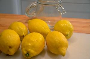 Citroner till limoncello