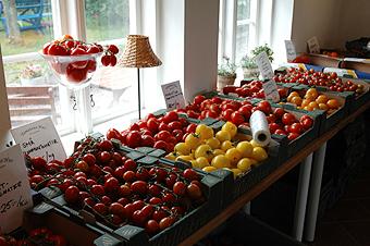tomater på tomatens hus